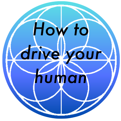 How to drive your human Online Course